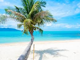 When Is The Best Time To Visit Koh Samui Koh Samui Weather