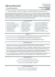 Senior Executive Resume Samples Topshoppingnetwork Com