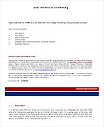 Sales Plan Document 21 Sales Plan Examples Pdf Word Pages Examples