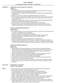 Sample Professor Resume Biology Professor Resume Samples Velvet Jobs