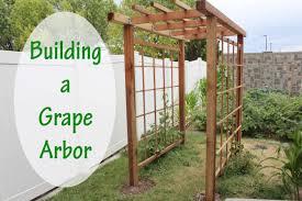 Photo 8 of 9 Building A Grape Arbor - Stoney Acres (awesome Build An Arbor  Trellis #8)