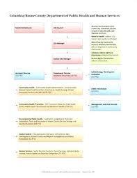 Business Flow Chart Template Word Department Flow Chart Template