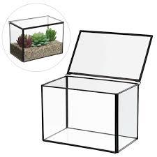 Decorative Display Cases Clear Glass Rectangular Decorative Terrarium Box Air Plant