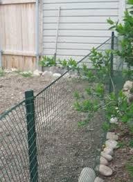 temporary yard fence. How To Build A Cheap, Temporary Vegetable Garden Fence - Yahoo! Voices Voices.yahoo.com Yard R