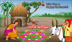 Image result for images of sankranthi