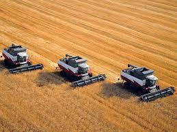 Себестоимость продукции растениеводства cельхозпортал Комбайны в поле молотят пшеницу