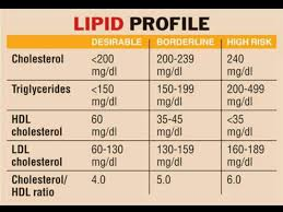 Cholesterol Lab Values Chart Lipid Profile Chart Triglycerides Hdl Ldl Total