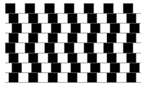Optical illusions can use color, light and patterns to create images that can be deceptive or misleading to our brains. Optical Illusions For Kids All Kids Network