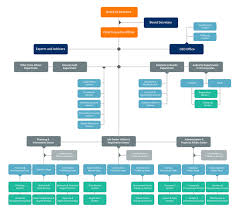 Corporate Organizational Chart With Board Of Directors Pamr Organisation Chart