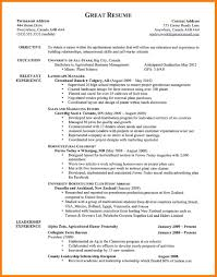 8 Example Of Good Resume Precis Format