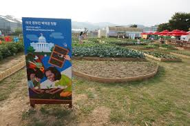 Kitchen Garden International Healthy Simplicity Michelle Obamas Garden In Goesan Be Korea