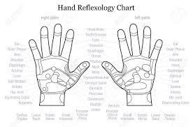 Hand Body Chart Hand Reflexology Chart With Accurate Description Of The Corresponding
