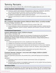 Sample Resume Entry Level Information Technology Entry Level