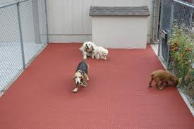back to kennel flooring for dogs