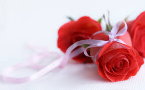 Roses Flowers Wallpapers Rose Flowers Wallpapers View Widescreen Pictures High Quality Pc