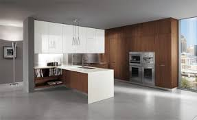 Italian Kitchen Furniture The Best Ultra Modern Italian Kitchen Design Orchidlagooncom