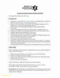 Blank Resume Templates Awesome Awesome Blank Basic Resume Templates