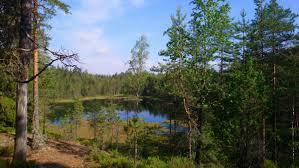 """Marion Fields on Twitter: """"#kämmenlampi in #vihti #finland on yesterday's  #midsummer hike on #reitti2000. #Hiking #walking #vaellus #juhannus… """""""