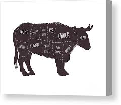 Cow Butcher Chart Primitive Butcher Shop Beef Cuts Chart T Shirt Canvas Print
