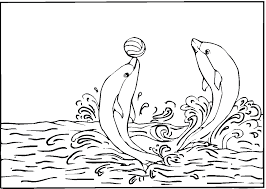 Small Picture Dolphins playing with ball coloring page