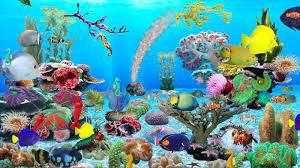 Aquarium Live Wallpaper For Windows 10 ...