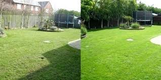 trugreen before and after before after lawn trugreen reviews