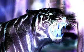 3d Tigers Desktop Wallpaper 3d Tiger ...