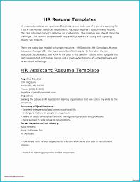 Microsoft Word Resume Template 2010 Salumguilherme