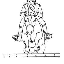 Small Picture STEEPLECHASE HORSE RACING coloring pages Coloring pages