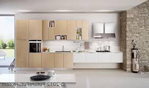 modern kitchen design 2012. Full Size Of Kitchen:modern Italian Kitchen Design 2012 Modern In Nepal H