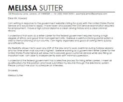 Cover Letter Sample For Federal Government Job Cover Letter Samples