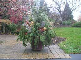 Container Gardening Winter Pots Decorating For Christmas Container Garden Ideas For Winter