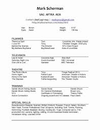 Resume Cover Letter Copy And Paste Resume Templates Template For