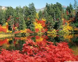 Autumn, Japan Ultra HD Desktop ...
