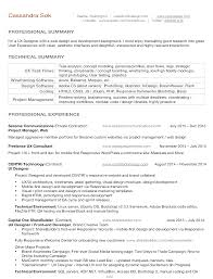 Excellent Junior Dba Resume Gallery Entry Level Resume Templates