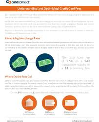 Understanding And Optimizing Credit Card Fees Pdf