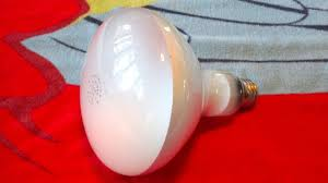 R40 Flood Light Bulbs Ken Rad 150watt R40 Incandescent Flood Light Bulb