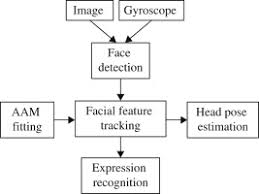 Face Perspective Chart Facial Feature An Overview Sciencedirect Topics