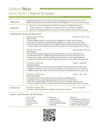 Media Planner Resumes Digital Media Planner Resume Rome Fontanacountryinn Com