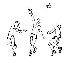 Министерство образования и науки РФ Реферат Волейбол doc Рис 5