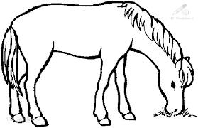 Kleurplaat Paard Dat Zijn Zany Equbit