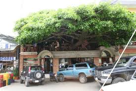 Treehouse Monteverde Costa Rica Tree House Restaurante And Cafe Treehouse Costa Rica Monteverde