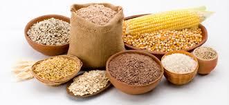 Resultado de imagem para grãos