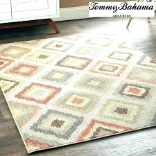 camping world outdoor rugs bright best choosing rug things keep mind camping world outdoor rugs