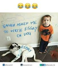 ✅ best memes about writing essay writing essay memes dog teachers and dogging teacher asked to write essay on dog sarcasmlol com asarcasmlol sarcastic us