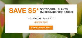 the home depot canada garden club s save 5 on tropical plants