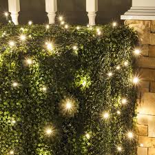 Christmas Net Lights Set Of 100 Led Warm White Led Net Lights Christmas Net Lights Outdoor Christmas Decorations Green Wire 4 X 6 Ft 5mm Lights Warm White