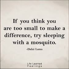Making A Difference Quotes Magnificent 48 Famous Quotes If You Think You Are Too Small To Make A