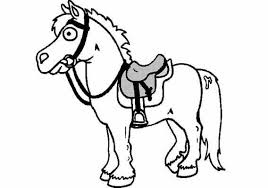 Ponygekken Ponygekkenjouwwebnl