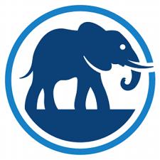 Elephant Auto Insurance Quote Custom Elephant Insurance Quotes For Your Home Or Auto Insurance Quote Deals